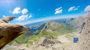 WebBuzz du 24/10/2017: Superbe point de vue d'un aigle sur les Alpes -Stunning eagle's point of view of the Alps