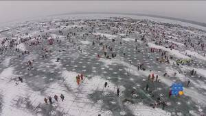 WebBuzz du 30/01/2015: Le plus grand concours de pêche sur glace de bienfaisance au monde-World's Largest Charitable Ice Fishing Contest