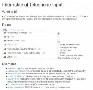 Un plugin jQuery pour les indicatifs internationaux - International Telephone Input