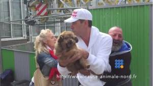 "WebBuzz du 24/09/2015: La cause animale nord ""vole"" le chien d'un SDF-An homeless man's puppy gets stolen by La cause animale nord"