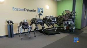 WebBuzz du 10/02/2015: Robot quadrupède tous terrains-All road four legged robot