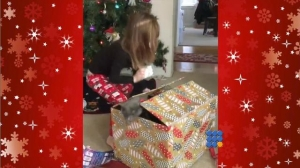 WebBuzz du 27/12/2016: Un chaton surprend une petite fille pour Noël-Cat surprises 3 years old girl for Christmas