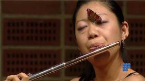 WebBuzz du 19/09/2014: Un papillon attiré par le son de la flûte classique-A butterfly attracted by the classical flute
