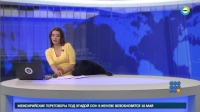 WebBuzz du 23/05/2017: Russie un Chien s invite au journal télévisé-Dog Interrupts Russian Newscast