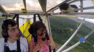 WebBuzz du 23/06/2015: Un pilote d'ulm trouve un chat en plein vol-A microlight pilot find a cat during a flight