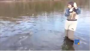 WebBuzz du 02/12/2014: Premier poisson pour son épouse-First fish for his wife
